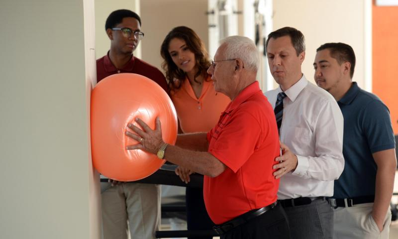 Physical Therapy Program Overview